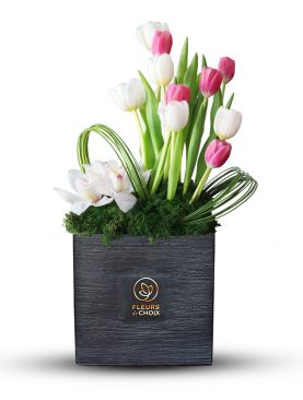 Mixed Tulips and Cymbidium